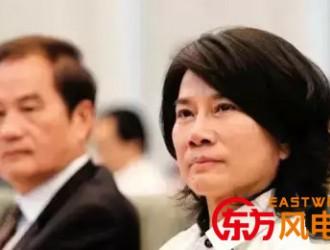 """全球100位最佳CEO""""——董明珠 职场女性的典范"""