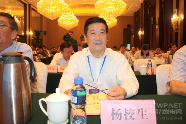 中国农机工业协会风能设备分会杨校生理事长、