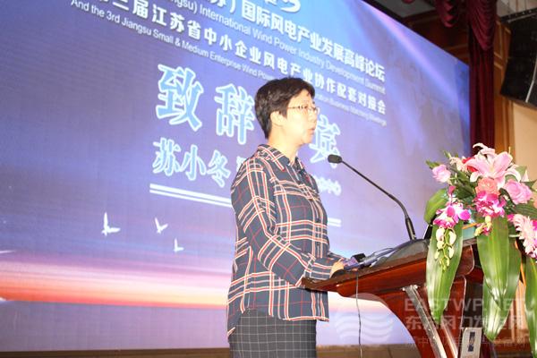 江苏风力发电工程技术中心主任苏小冬女士