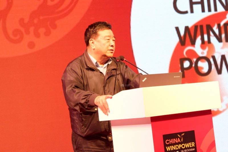 石定寰 中国可再生能源学会理事长