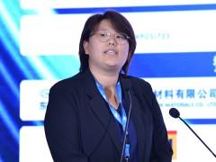 赵婷:西卡在风电行业的解决方案 (355播放)