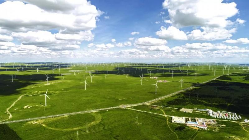 草原风海、内蒙古我爱飞翔教育科技有限公司、杨慧敏
