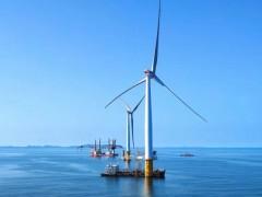 """73台""""大风车""""首月输电1亿千瓦时!每年减少二氧化碳排放82.88万吨 (531播放)"""